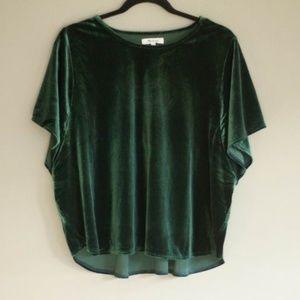 NWT Green Butterfly Sleeve Velvet Top